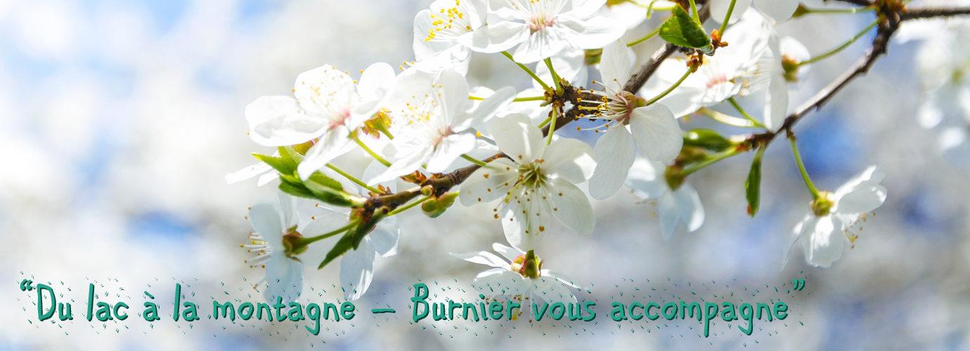 Pépinières Burnier Sàrl